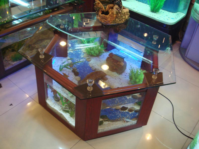 Diy aquarium coffee table coffee table design ideas - Fabriquer table basse aquarium ...