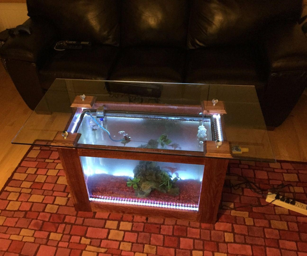 How to Build a Coffee Table Aquarium