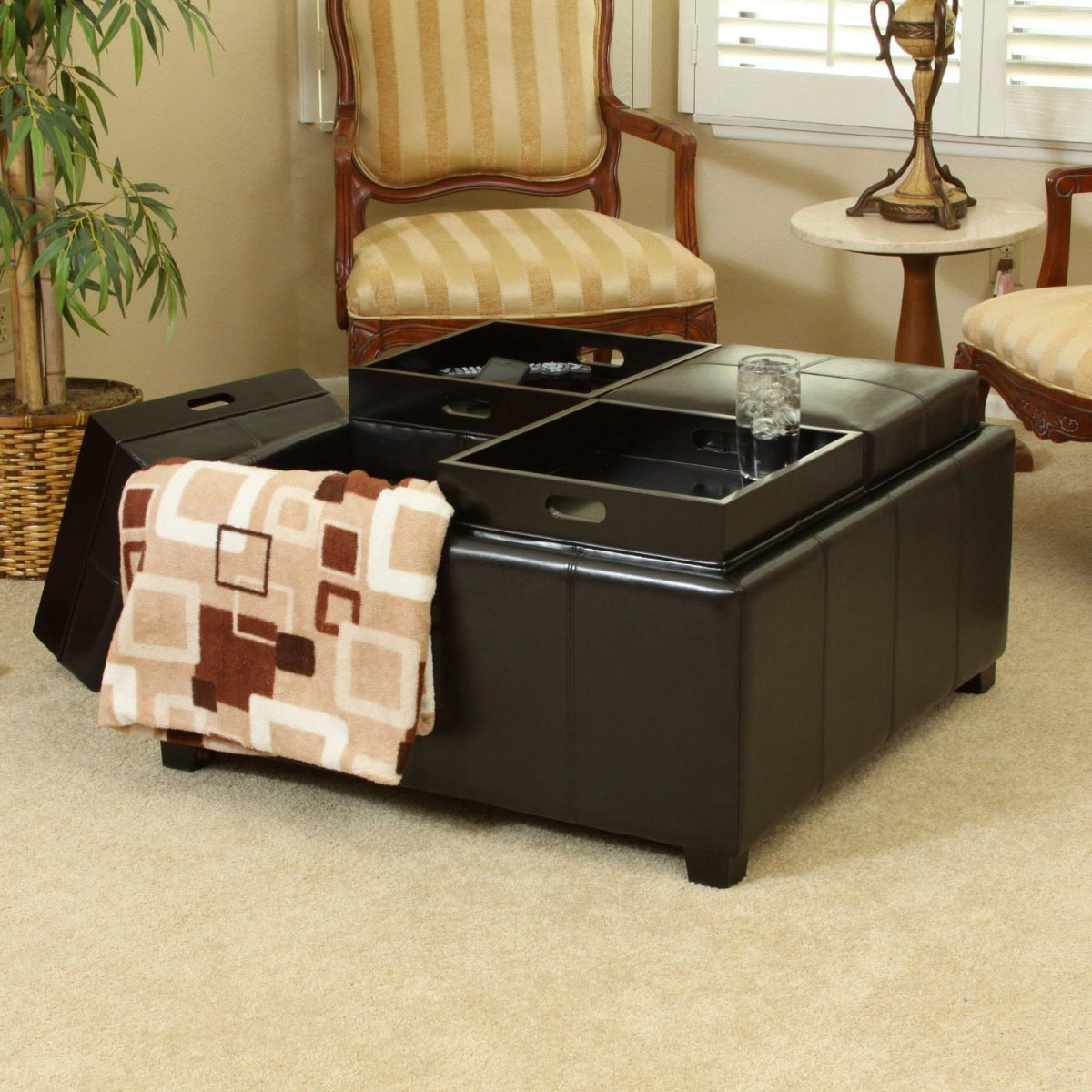 Storage Coffee Table Ottomans