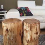 Log Furniture Coffee Table