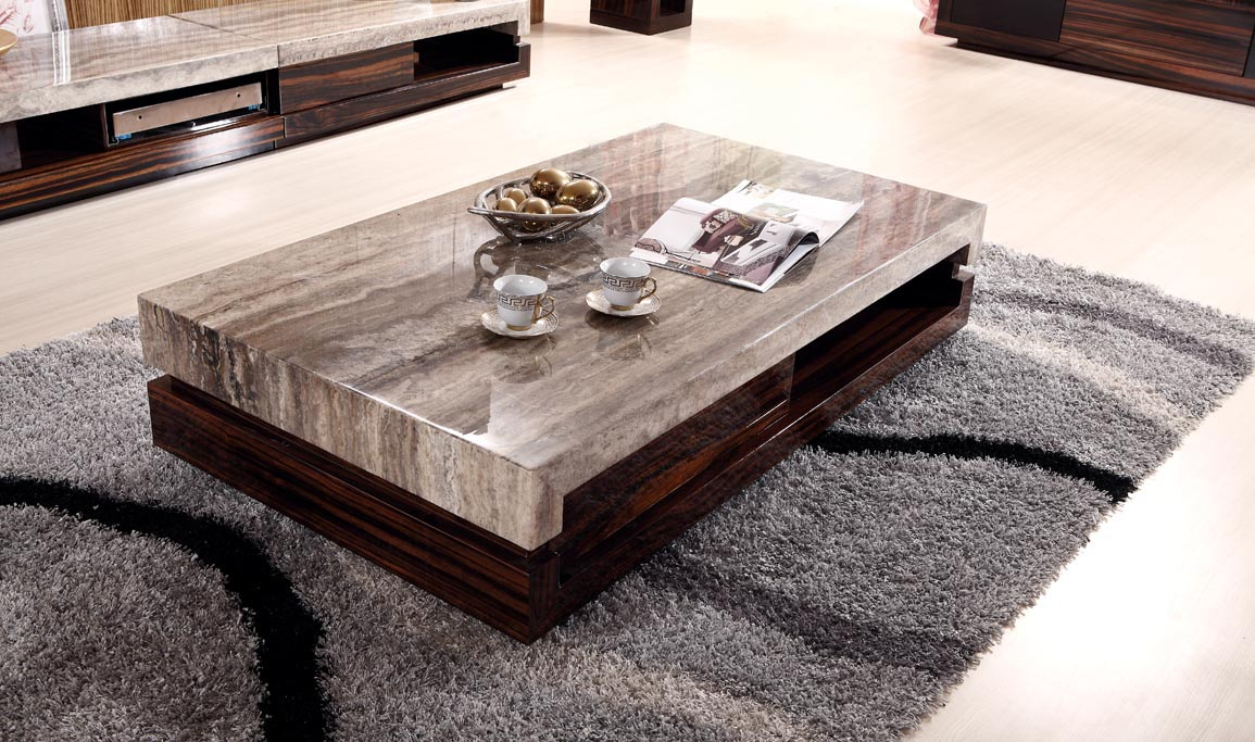 Modern Low Coffee Table